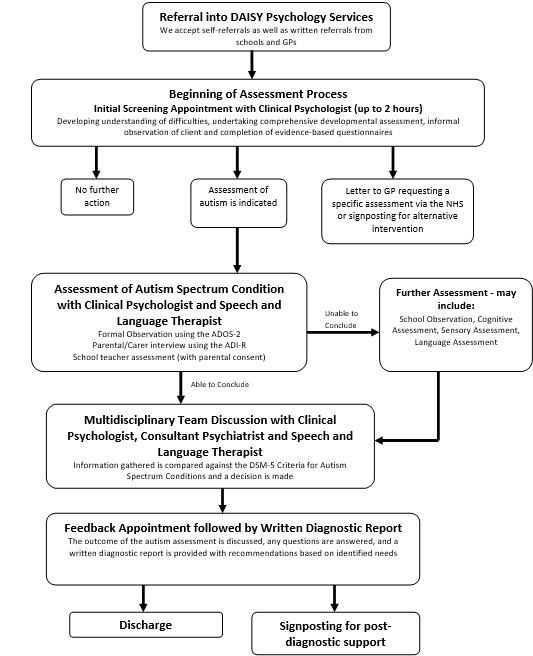 DAISY Process Flowchart